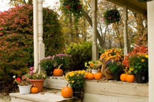 Mums, pumpkins and fall foliage on front porch