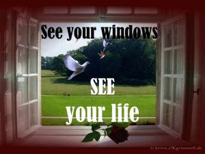 See your Windows